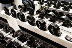 Rep1 Fitness dumbbells for personal training
